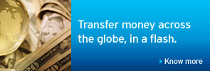 Transfer money across the globe, in a flash.
